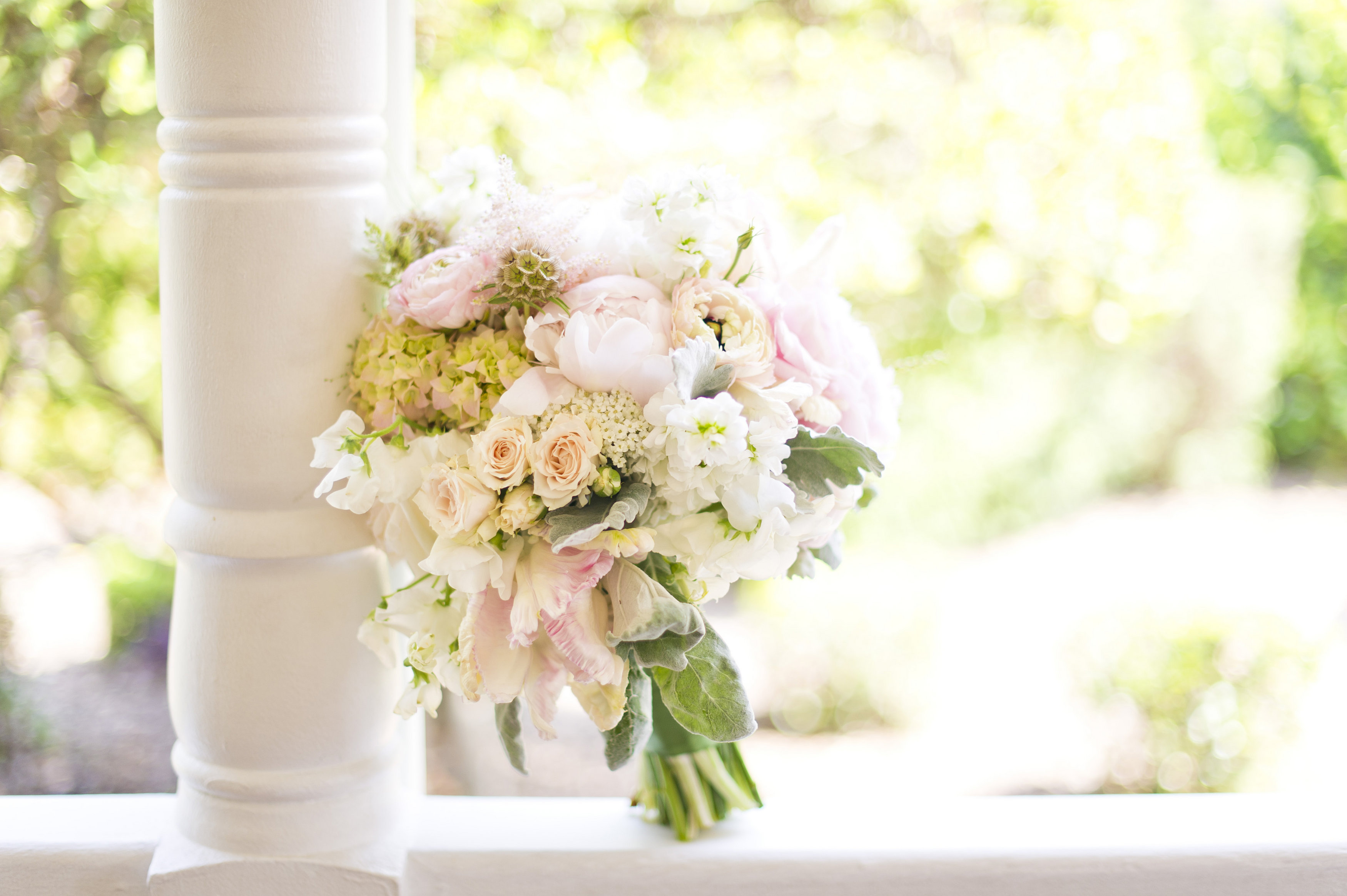 Affordable Wedding Flowers Dallas Tx : What are customers saying dallas and fort worth